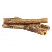 Ostrich Trachea Natural Dog Chew 4 pieces